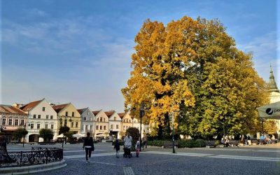 Žilina bude v roku 2021 hospodáriť s vyrovnaným rozpočtom 80,98 mil. eur